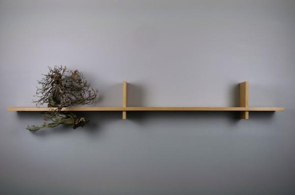 treeshelf01
